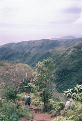 Kuliouou Ridge (nate.luzod) Tags: nikonosv fujifilm superia800 hiking hawai