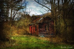 Into the Woods (socalgal_64) Tags: shack decayed abandoned carolynlandi landscape structure architecture old antique pennsylvania saylorsburgpa hamiltontownship cherryvalley poconos trees house mountains woods red texture scenic spring weathered colorful rural coth coth5