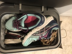 He threw them in for me (CallalilyGazer) Tags: dirtysneakers stinkysneakers stinkyshoes stinky trashed oldshoes wetsneakers muddyshoes muddysneakers nikerevolution asics toms dirtyshoes old shoes dirty sneakers nikes mud stained smelly