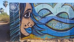 Sparkling near the palm trees (radargeek) Tags: mural painting az arizona casagrande hair art