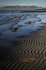 Húnafjordur, Iceland (Karol Majewski) Tags: iceland island islandia nature landscape spring may adventure wander wanderlust bùðarkirkja hvitserkur shore coast tides waves mountains hills