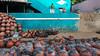 Untitled (Robinraj.M) Tags: chennaiweekendclickers cc cwc cwc653 thiruneermalai wideangle tamilnadu tokina1116 tokina women people peopleofindia pottery rr robinraj robin robinrajm rootsofindia robinsclick robinclicks robinsclicks robinclick icapture india indian incredibleindia incredible southindia streetsofindia flickr ngc nikon nikond7100 nikond color