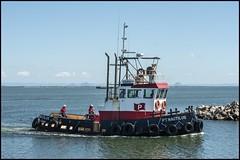 Tug PT NAUTILUS to dock at Scarborough Marina-2= (Sheba_Also 43,000 photos) Tags: tug pt nautilus dock scarborough marina