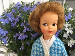Pepper and Lobelia (Foxy Belle) Tags: doll flowers pepper tammy little sister blue knit sweater outside vintage ideal