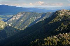 DSC01022 (kyleddsn) Tags: hiking utah ogden spring