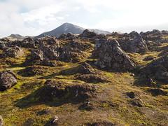 P8310706 (Anny_7965) Tags: iceland landmannalaugar