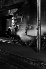 GWS 73964bw (kgvuk) Tags: gws didcot didcotrailwaycentre unionofsouthafrica 60009 a4 pacific 462 steam locomotive engine train railway lner br britishrailways flyingscotsman 60103 a3 4472
