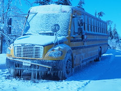 """No Bus Today! (cgwilfongphotos) Tags: bus schoolbus icestorm ice winter """"i am canadian"""" iamcanadian"""