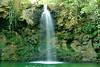 (Rodrigo Paganini) Tags: natureza nature agua water verde green paisagem nikon d3100 dx 1855mm