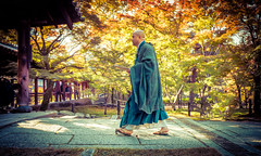 A Monk In Kyoto (Stuck in Customs) Tags: kyoto japan treyratcliff stuckincustoms stuckincustomscom aurorahdr hdr hdrtutorial hdrphotography hdrphoto monk traditions autumn leaves zen sony a7r3 travel 80stays rcmemories