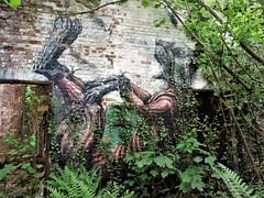 ROA / Malmar - 5 mei 2018 (Ferdinand 'Ferre' Feys) Tags: gent ghent gand belgium belgique belgië streetart artdelarue graffitiart graffiti graff urbanart urbanarte arteurbano ferdinandfeys roa