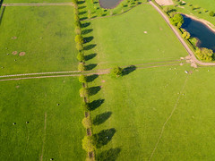 Bevere lock (rtb69) Tags: bevere quadcopter lock trees river severn canal boats