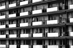 """""""Gdzie oni są, ci wszyscy moi przyjaciele"""" / """"Where are they, all my friends"""" - 2017 (Tomek Szczyrba) Tags: blok balkony balcony balkon miasto city town człowiek man ludzie people street photo ulica bw monochrome polska poland fotografiauliczna streetphotography"""