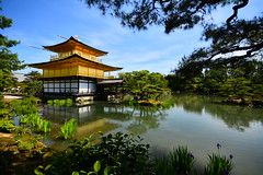 #131 (Vitor Nisida) Tags: kyoto quioto japão japon nihon japan temple shrine templo golden kinkakuji dourado