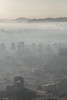 gone empire (sami kuosmanen) Tags: asia hampi taivas travel mies man matka trip luonto light landscape valo vuori tree nature india intia mist sumu haze usva morning photography puu history vijayanagara empire kingdom mystery mystic beautiful maisema