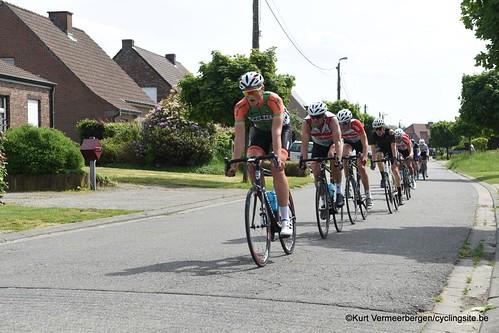 Zandhoven (486)