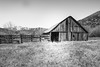 Sonora Junction, Mono County, California (paccode) Tags: d850 landscape bushes blackwhite hills snow california abandoned barn monochrome farm forgotten creepy fence scary quiet mountain coleville unitedstates us