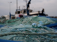 (An Arzhig) Tags: bateau ship filet port pêcheur roscoff bretagne france panasonic gx800 finistère lumix
