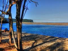 View across the lake I (elphweb) Tags: hdr highdynamicrange nsw australia lake water ocean sea tree trees forest bush woods wood