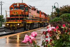 The Other P&W (sullivan1985) Tags: portland vancouver portlandwestern pnwr pnwr2314 pnwr2307 pnwr3007 gp392 gp402 emd geep geeps rainy cloudy storm orange flowers sce train railroad freight freighttrain wa washington pnw electromotive engines locomotives railway