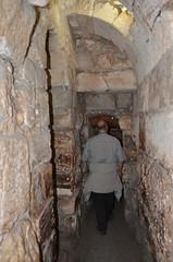 DBN_7803 (David_North) Tags: northholylands2018 israel jerusalem templemount green