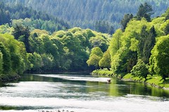 The river Tay (eric robb niven) Tags: ericrobbniven scotland rivertay cycling dunkeld perthshire landscape dundee trees hills
