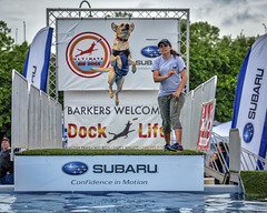 Rainy Riverrock 2018 (Mobilus In Mobili) Tags: richmond riverrock virginia unitedstates us ultimateairdogs dogs