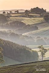 Missed Mist (macdad1948) Tags: devon drewsteignton rollinghills hills trees mist dew morning dawn