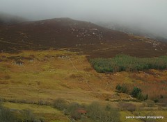 mist over the hills (patrickcolhoun) Tags: mist fog landscape trees woods urrishills donegal ireland nature mountains countydonegal inishowen ulster sky