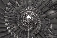 Black Snail (Sockenhummel) Tags: 2015 brandenburg buga treppe spirale schnecke spiral vertigo stairs fuji x30 snail turm aussichtsturm wendeltreppe schwarzweis blackwhite mono monochrom einfarbig