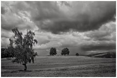 Gewitterstimmung (Beutler Daniel) Tags: fujixe3 fujinonxf23mmf20wr landschaften landscape blackwhite bw schwarzweiss sw switzerland svizzera suisse schweiz