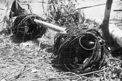 kalitami686 (Vonkenna) Tags: indonesia kalitami 1970s seismicexploration