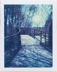 Bridge (Polaroid T669) (mmartinsson) Tags: 2018 bridge instantfilm tungsten film trees analoguephotography expired mamiyasekor scan mamiyauniversal t669 epsonperfectionv700 polaroid 669 127mm stream greifenberg bayern tyskland de