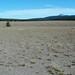 Pumice Desert (north of Crater Lake Caldera, Oregon, USA) 15