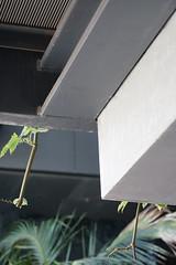 2018-04-FL-183537 (acme london) Tags: balconystructure barcelona corridor fira hotel jeannouvel landscape planterboxes planting renaissancehotelfira spain