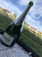 IMG_0150 (burde73) Tags: krug kia chiara giovoni andrea gori lallement assiette champenoise tre stelle michelin champagne mesnil