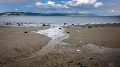 Beach Stream (rich trinter photos) Tags: picnicpoint edmonds washington unitedstates us longexposure pugetsound trinterphotos richtrinter northwest