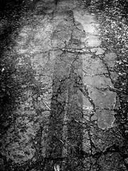 The Pavement 1 (Jeffery Womack) Tags: novi mayburystatepark 2018earylyspring oldpavement monochrome smartphonephotography nature water samsunggalaxy8plus blackandwhite dramaticmonochrome hikingtrails trees crackedwalk michigan northville unitedstates us