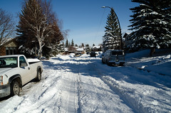 Snowy Street (Bracus Triticum) Tags: snowy street calgary カルガリー アルバータ州 alberta canada カナダ 3月 弥生 さんがつ yayoi newlifemonth 2018 平成30年 spring march 三月 sangatsu