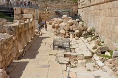 DBN_7880 (David_North) Tags: northholylands2018 israel jerusalem templemount