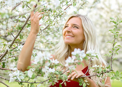 Springtime in the Orchard (Jenny Onsager) Tags: spring springtime alexis appleorchard floweringtrees portrait shallowdof reddress blondhair teengirls