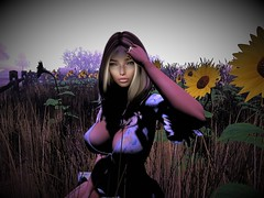 Alex in Mirage 2 (isabellajordynn) Tags: field flowers sky sun adult avatar avi photo pic secondlife adventure sunflowers trees nature natural virtual artphotography shadows spring