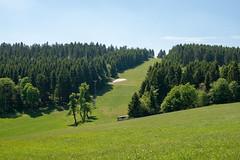 Rest des Winters (Stefan_Feige) Tags: winterberg schnee vhs weniger nordrhein westfalen sauerland
