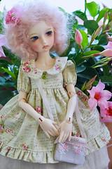 May Princess (assamcat) Tags: imda imda43 soom bjd balljointeddoll abjd canon handmade