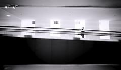 Transition Zone (Novowyr) Tags: transition future stairway moving escalator connection connecting tunnel subterranean politics people passing handrail barcode shiny metal glass architecture interior berlin deutscherbundestag underground politik stadt menschen strichcode novowyr