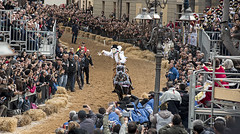 Oristano238 (siegele) Tags: fastnacht fasnacht fasching karneval carnevale carnaval sardinien maschere carrasegare sartiglia oristano