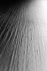 monochrome texture-4 (grahamrobb888) Tags: nikon nikond800 nikkor nikkor20mmf18 blackwhite monochrome contrast lines lightandshadow light