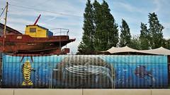Cee Pil / DOK - 11 mei 2018 (Ferdinand 'Ferre' Feys) Tags: gent ghent gand belgium belgique belgië streetart artdelarue graffitiart graffiti graff urbanart urbanarte arteurbano ferdinandfeys ceepil