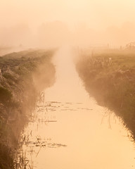 Shadows in the mist (James Mc Innes) Tags: 24105mm april canon canon700d jamesmcinnes landscapes levels mist morning nature somerset spring sunrise