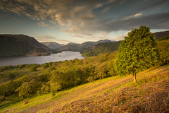Glencoyne Bay and Ullswater view (tdove77) Tags: ullswater glencoyne bay park brow glenridding lake district eastern lakes cumbria uk sony a7ii 1635mm wide angle lee filters